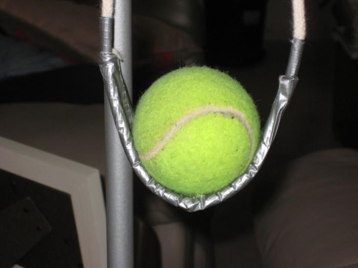 sized_w_tennis.jpg