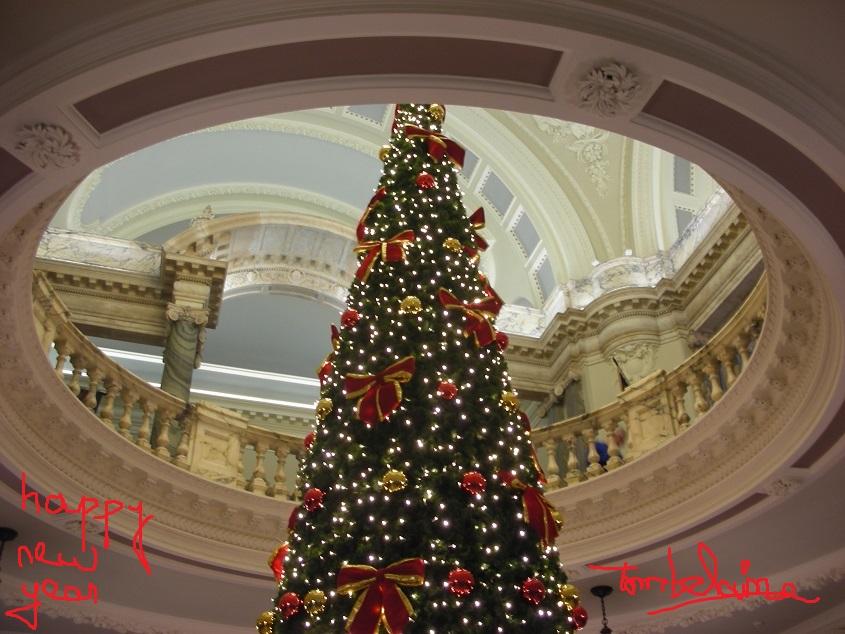 Belfast_mairie_3.JPG